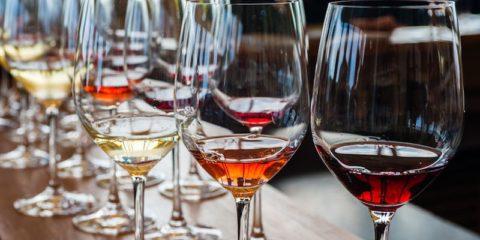 DEGUSTIAMO? Conoscere il vino